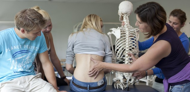 Duales Studium Physiotherapie