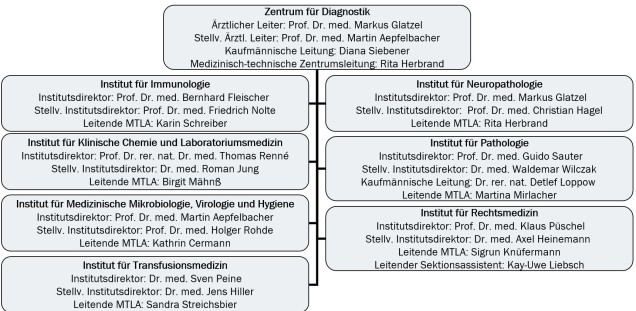 Organisation chart of the Center for Diagnostics